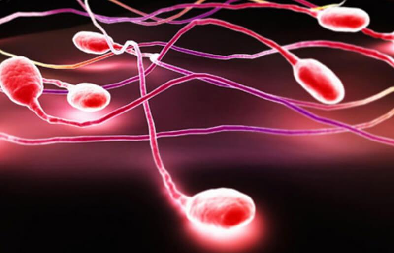 Tinh trùng khỏe mạnh thường có màu gì?
