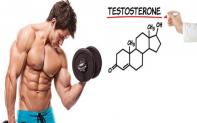 Testosterone là gì? Vai trò của testosterone là như thế nào?